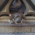 Le chien porte-bonheur, Cathédrale de Strasbourg