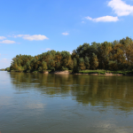 Promenade en bateau sur la Loire