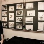 Harper- photoPh.Vermès